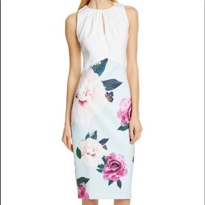 Ted Baker London Annile Magnificent Ruched Dress